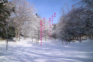 八木山テラス 新年あけましておめでとうございます
