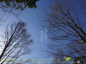 八木山テラス春ポスター